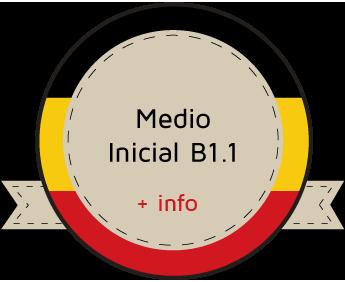 aleman medio b1.1